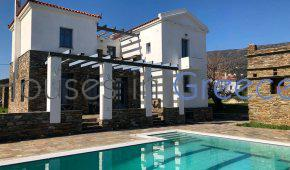 Andros, beautiful villa with pool and sea view for sale