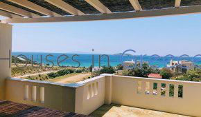 Andros, villa with pool for sale