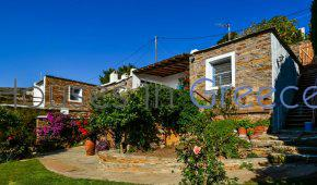 Andros, charming house with sea view for sale