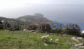 Andros, Ano Aprovato, land for sale