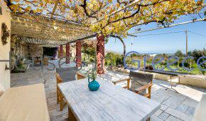 Amazing architect's villa for sale in Paros