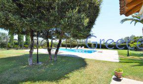 Beautiful country side villa for sale in Evia